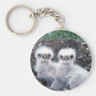 Bald Eagle Chicks Keychain
