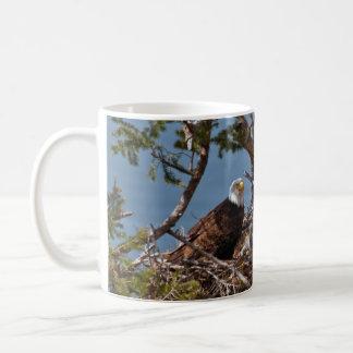 Bald Eagle Chicks - Mug