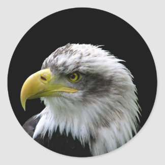 Bald Eagle Classic Round Sticker