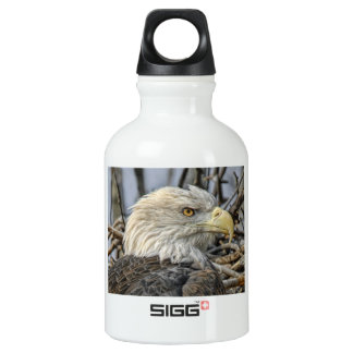 Bald Eagle Close-Up Aluminum Water Bottle
