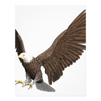 Bald Eagle Coming In For A Landing Letterhead
