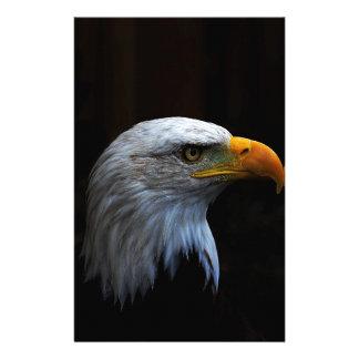 Bald Eagle copy.jpg Stationery