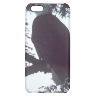 bald eagle cover for iPhone 5C