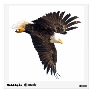 Bald Eagle Dive Wall Decal