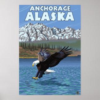 Bald Eagle Diving - Anchorage, Alaska Print