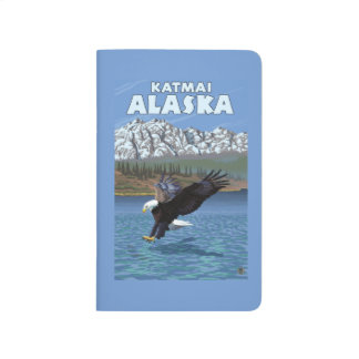 Bald Eagle Diving - Katmai, Alaska Journal