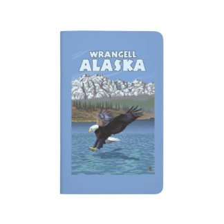 Bald Eagle Diving - Wrangell, Alaska Journal