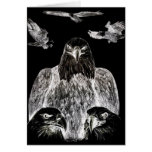 Bald Eagle Drawing, Inversion of Pencil drawing Greeting Card