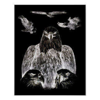 Bald Eagle Drawing, Inversion of Pencil drawing Poster