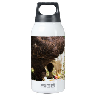 Bald Eagle Eating His Prey Thermos Water Bottle