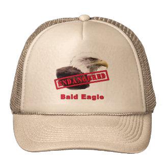 Bald Eagle Endangered Species Trucker Hat