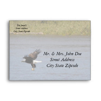 Bald Eagle Envelope