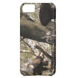 Bald Eagle Family Case For iPhone 5C