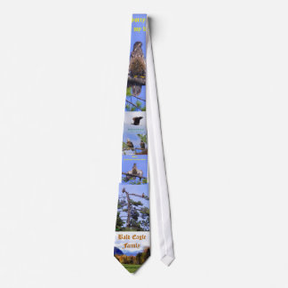 Bald Eagle Family in Maine Tie