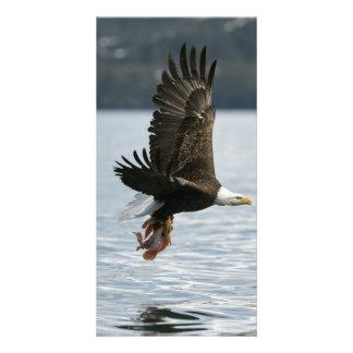 Bald Eagle Fish Retrieval Card