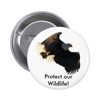 Bald Eagle Flight Collection II Button