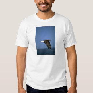 Bald Eagle flying across horizon Tee Shirt