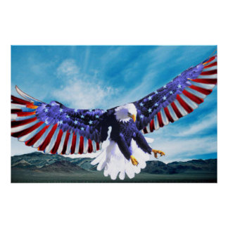 Bald Eagle flying in the sky with a American flag Poster