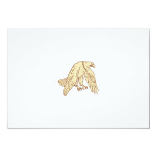Bald Eagle Flying Wings Down Drawing Card