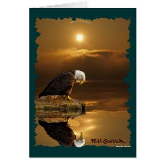 Bald Eagle Gratitude Wildlife Greeting Card
