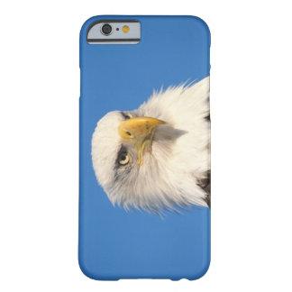 bald eagle, Haliaeetus leuccocephalus, 2 Barely There iPhone 6 Case