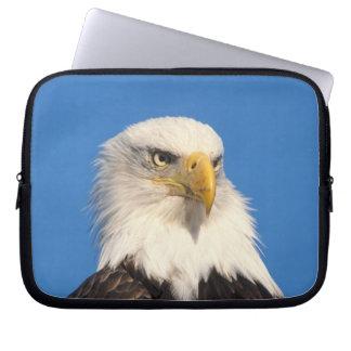 bald eagle, Haliaeetus leuccocephalus, 2 Laptop Computer Sleeve