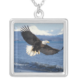 bald eagle, Haliaeetus leuccocephalus, in flight Silver Plated Necklace