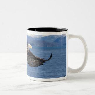 bald eagle, Haliaeetus leuccocephalus, in flight Two-Tone Coffee Mug