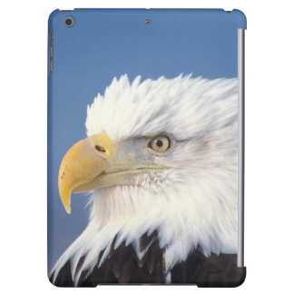 bald eagle, Haliaeetus leuccocephalus, iPad Air Cover