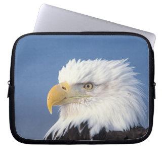 bald eagle, Haliaeetus leuccocephalus, Laptop Computer Sleeves