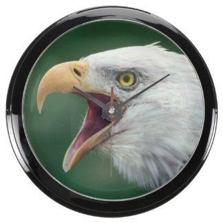 Bald Eagle (Haliaeetus leucocephalus) Aquarium Clocks
