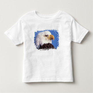 bald eagle, Haliaeetus leucocephalus, close up, 3 Toddler T-shirt