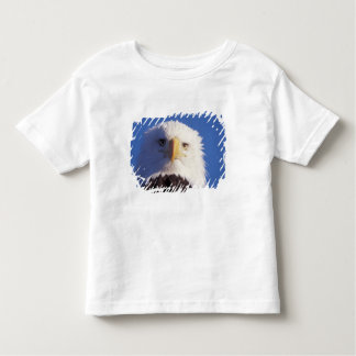 bald eagle, Haliaeetus leucocephalus, head shot, Toddler T-shirt