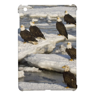 Bald Eagle, Haliaeetus leucocephalus, Homer, 2 iPad Mini Case