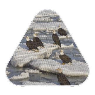 Bald Eagle, Haliaeetus leucocephalus, Homer, 2 Bluetooth Speaker