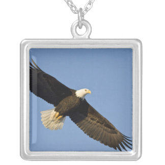 Bald Eagle, Haliaeetus leucocephalus, Homer, 4 Silver Plated Necklace