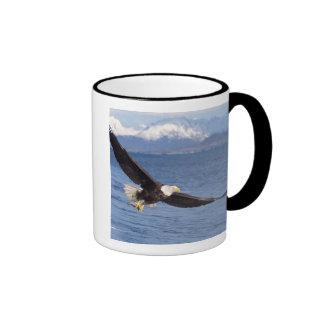 bald eagle, Haliaeetus leucocephalus, in flight 4 Ringer Coffee Mug