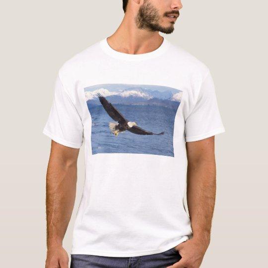 bald eagle, Haliaeetus leucocephalus, in flight 4 T-Shirt