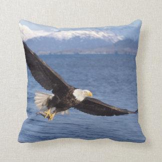 bald eagle, Haliaeetus leucocephalus, in flight 4 Throw Pillow