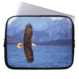 bald eagle, Haliaeetus leucocephalus, in flight Computer Sleeves