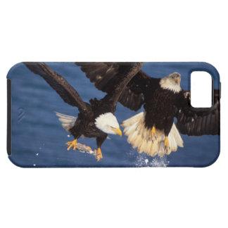 bald eagle, Haliaeetus leucocephalus, taking off iPhone SE/5/5s Case