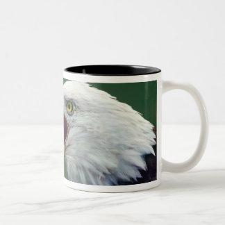 Bald Eagle (Haliaeetus leucocephalus) Two-Tone Coffee Mug