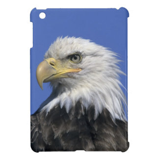 Bald Eagle, (Haliaeetus leucocephalus), wild, iPad Mini Cover