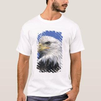 Bald Eagle, (Haliaeetus leucocephalus), wild, T-Shirt