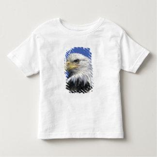 Bald Eagle, (Haliaeetus leucocephalus), wild, Toddler T-shirt