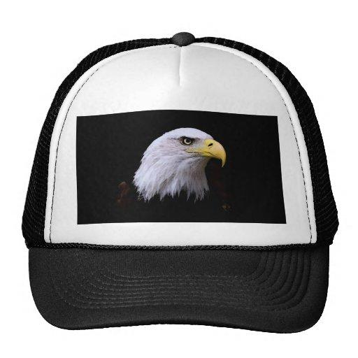 Bald Eagle Hats