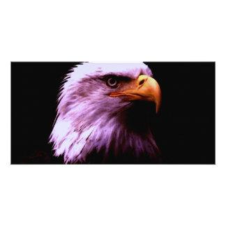 Bald Eagle Head Card