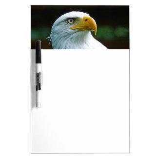 Bald Eagle Head Dry-Erase Board