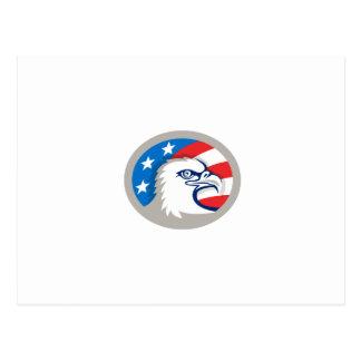 Bald Eagle Head USA Flag Oval Retro Postcard