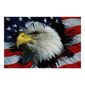 Bald Eagle head with a American flag behind him Poster